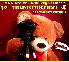 """Created for """"Challenge Winner"""" banner by Donna Keevers Driver"""
