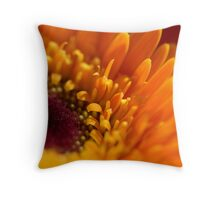 ...straight to the heart... Throw Pillow