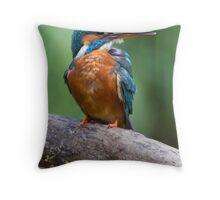 Kingfisher- Nottinghamshire Throw Pillow