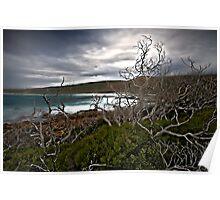 Cape Naturaliste- West Australia Poster
