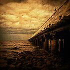 old pier by Tony Steinberg