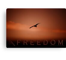 Freedom 2 © Vicki Ferrari Photography Canvas Print