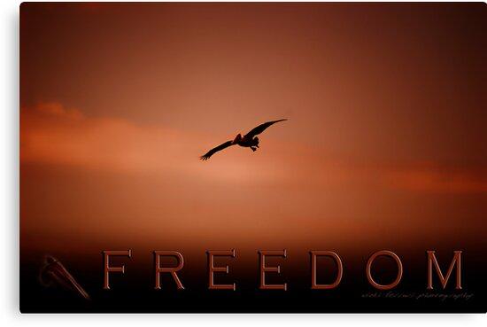 Freedom 2 © Vicki Ferrari Photography by Vicki Ferrari