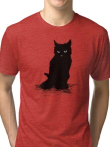 Webster The Cat (Large Version) Tri-blend T-Shirt