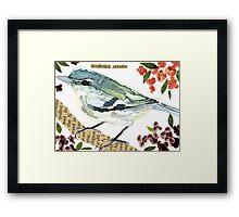 Dendroica cerulea [Cerulean Warbler - female] Framed Print