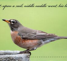 Little Robin Redbreast Nursery Rhyme by Bonnie T.  Barry
