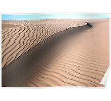 Oceano Dunes Snake Poster