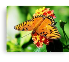 Grand Beauty Canvas Print