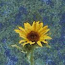 A Little Piece of Sun by Pat Moore