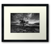 The Wiley Windy Moors Framed Print