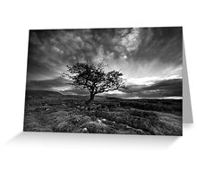 The Wiley Windy Moors Greeting Card