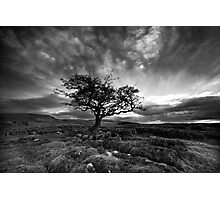 The Wiley Windy Moors Photographic Print