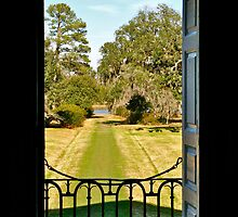 Drayton Hall, Back Door by David Davies