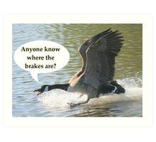 Bird Brakes Art Print