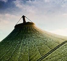 Roof by Simon Duckworth