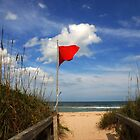 The Red Flag by Susanne Van Hulst