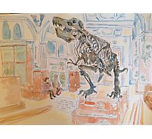 T rex at Manchester Museum  Photographic Print