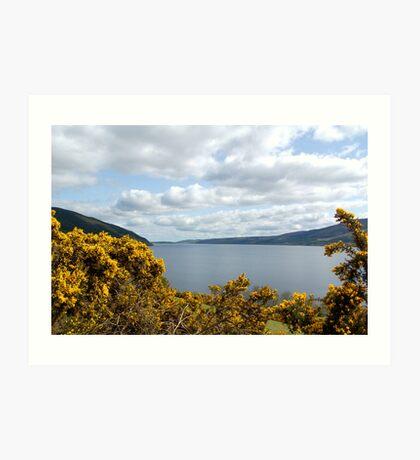 Golden Flowers of Loch Ness Art Print