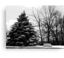 BW Winter Landscape Canvas Print