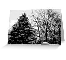 BW Winter Landscape Greeting Card