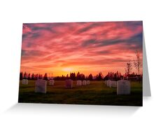Solemn Sundown Greeting Card
