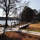 Coosa River Picnic Area by Charldia