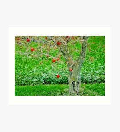 An Apple Tree Art Print