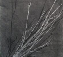 Light/Shadow Study by Aubrey Dunn