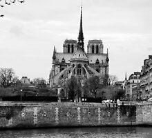 Notre Dame de Paris by Iris Martell