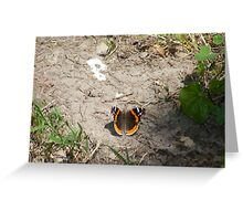 Restful moment Greeting Card
