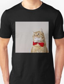 Red Cat sitting and looking up with a red ribbon,bow isolated on grey background. T-Shirt