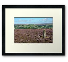Danby Moor looking beautiful  Framed Print