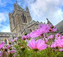 Christchurch Cathedral, Dublin by Nick Jermy