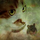 Cat and mouse games... by Yool