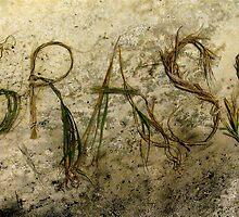 grass by evon ski