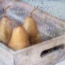 Three Pears by JulieLegg