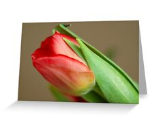 Spring is here :) Greeting Card