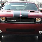 2010 Dodge Challenger by mltrue