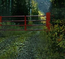 The Red Gate by RC deWinter