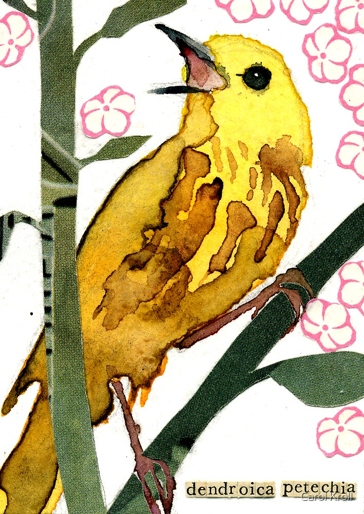 Dendroica Petechia #2 (Yellow Warbler #2) by Carol Kroll