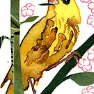 Dendroica Petechia #2 (Yellow Warbler #2) by Carol Kroll