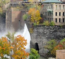 High Falls, Rochester by Lisa Cook