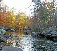 Unami Creek in Autumn - Green Lane, PA by MotherNature