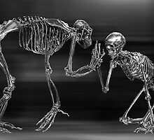 Evolution by Don Alexander Lumsden (Echo7)