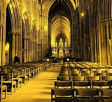 Lichfield Cathedral by Jacqueline Hill