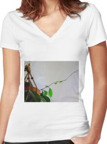 Never Stop Reaching....Hoya Plant Women's Fitted V-Neck T-Shirt