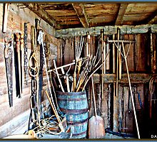 Tool Shed by DALucas