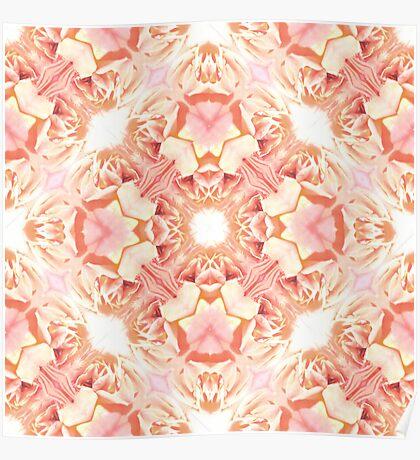 Rose wallpaper Poster