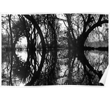 Flooded Trees, Henley. Poster