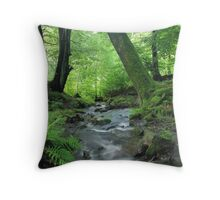 Woodland stream in summer Throw Pillow